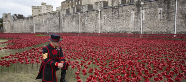 Il sergente degli Yeomen Warders (le guardie della torre di Londra) Bob Loughlin davanti all'installazione Blood Swept Lands and Seas of Red, Londra, 28 luglio 2014 (Oli Scarff/Getty Images